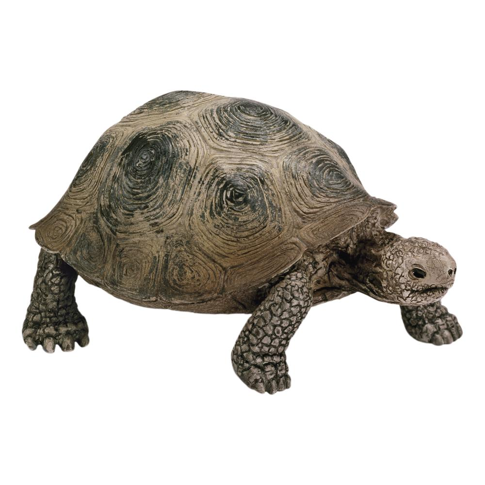 Schleich-Wild-Life-Tortuga-Gigante-Galapago-Animal-Salvaje-Figura-de-Juguete